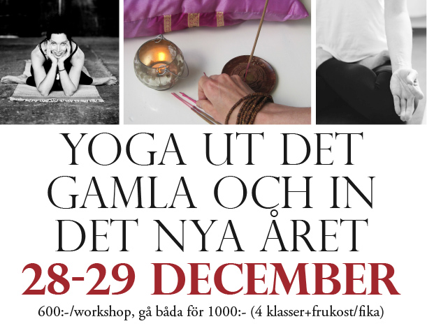 yinyogaworkshop3