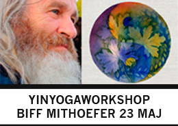 workshop-biff-mithoefer-yinyoga