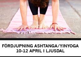 Helgworkshop i Ljusdal 10-12 april