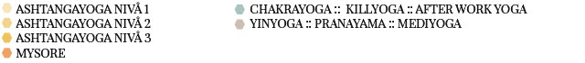 ashtangayoga-kurs